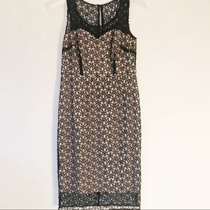 Ann Taylor Nude and black lace dress